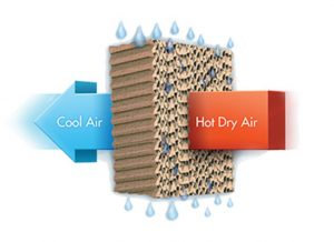 WHAT IS EVAPORATIVE COOLING